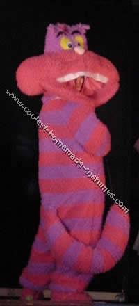 Coolest Homemade Cheshire Cat Costume Ideas
