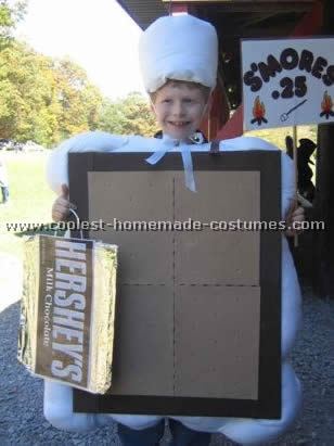 Smores Costume  sc 1 st  Coolest Homemade Costumes : graham cracker costume  - Germanpascual.Com