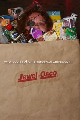 Homemade Bag of Groceries Costume