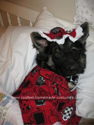 Big Bad Wolfie DIY Dog Costume