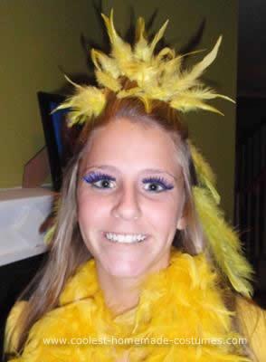 Homemade Big Bird Costume
