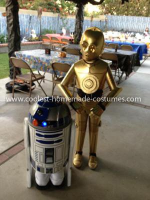 R2d2 And C3po Costumes Coolest C3PO an...
