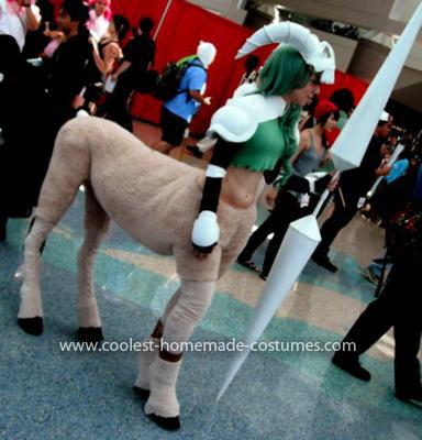 Homemade Centaur Costume