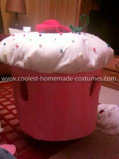 Homemade Cupcake Child Costume