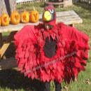 Cardinal Costumes