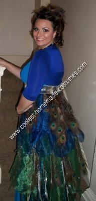 DIY Peacock Halloween Costume Idea