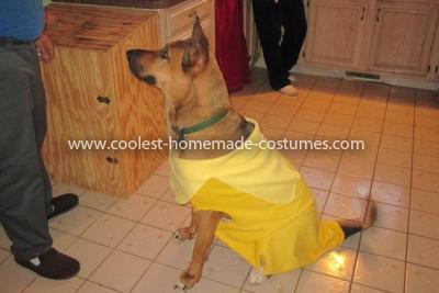 Homemade Dog Banana Costume