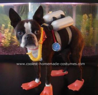 Echo the Scuba Diver Dog Costume