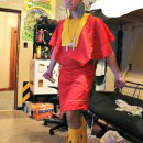 The Emperors New Groove Costumes