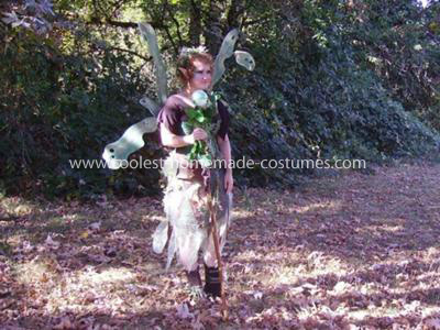 Coolest Forrest Fairy Costume