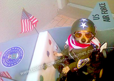 Homemade Air Force Fighter Pilot in Plane Dog Costume
