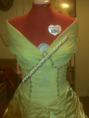 Homemade Belle Costume from Beauty and the Beast
