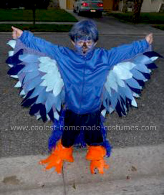 Homemade Bird Costume For Women Bird Costume and Butterfly