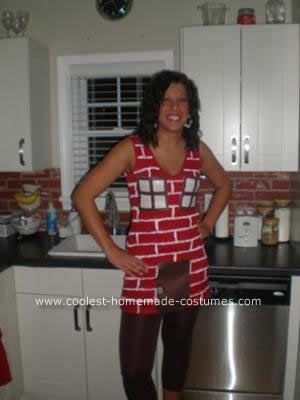 Homemade Brick House Costume