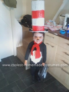 Homemade Cat in the Hat Kids Costume