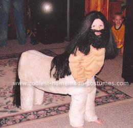 Homemade Centaur Half Man Half Horse Costume