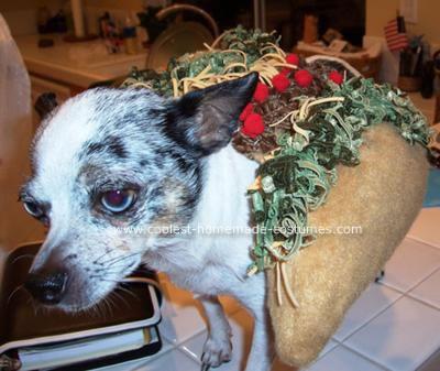 Homemade Chihuahua Chalupa Costume