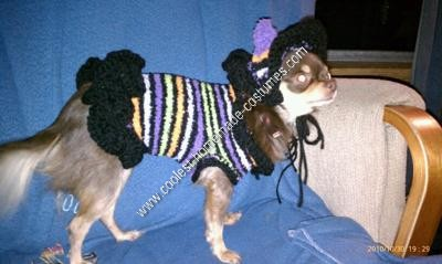 Homemade Chihuahua Dog Witch Costume