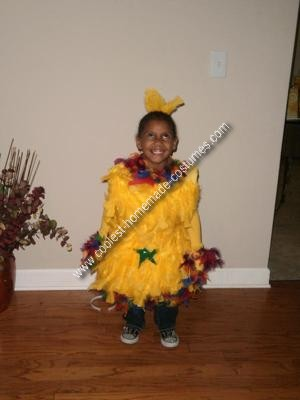 Homemade Dr. Seuss Star Bellied Sneetches Costume