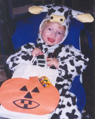 Homemade Field of Ben and Jerry's Cows Wheelchair Costume