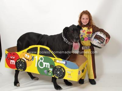 Homemade NASCAR Costume