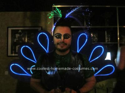 Homemade Peacock DIY Adult Costume Idea