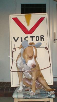 Homemade Pet Dog Halloween Costume