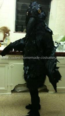 Coolest Homemade Raven Costume