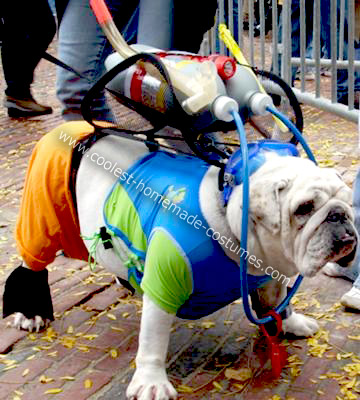 Homemade Scuba Bulldog Costume