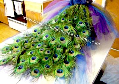 Homemade Toddler's Peacock Princess Costume
