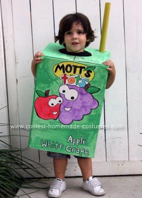 Homemade Juice Box Costume