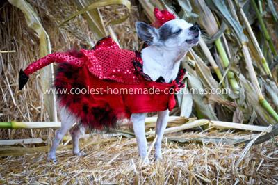 Coolest Little Red Devil Dog Costume