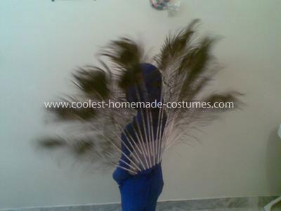 Coolest Peacock Costume Idea