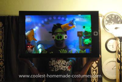Homemade Playable Angry Birds Costume