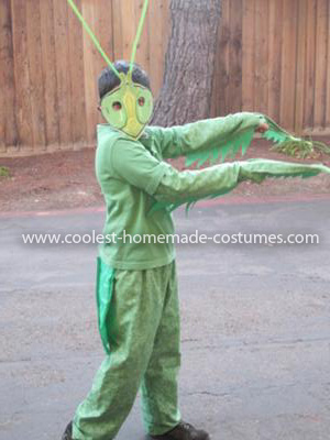 Homemade Praying Mantis Costume