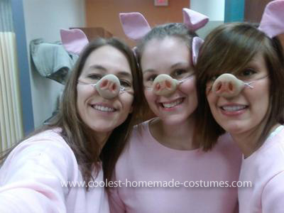 Homemade Three Little Pigs Homemade Pig Costume  sc 1 st  tvnewsclips.info & Homemade Pig Costume - 2018 images u0026 pictures - Homemade Pig Costumes