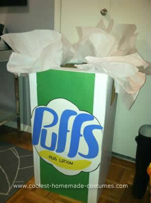 Homemade Tissue Box Costume