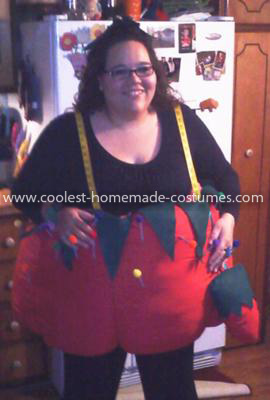 Coolest Tomato Pin Cushion Costume