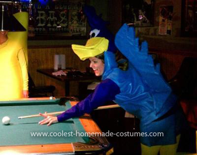 Homemade Wile E Coyote and Roadrunner Couple Costumes