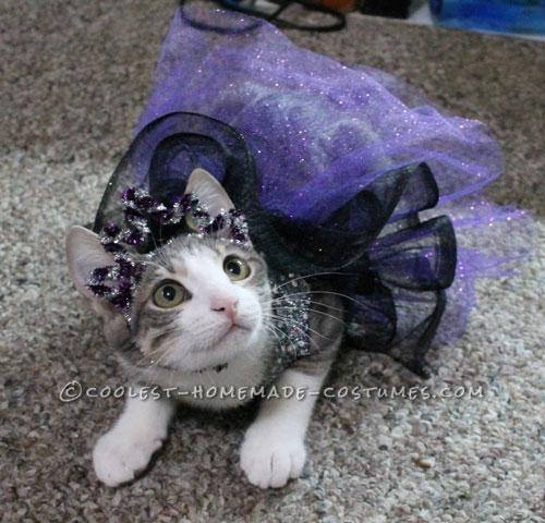 Princess Luna Cat Costume
