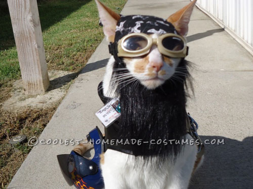 One of A Kind Biker Cat Costume