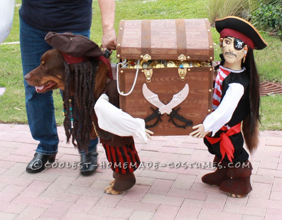 Best Homemade Dog Pirate Costume