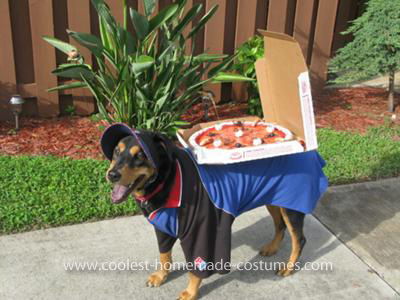 Coolest Domino's Delivery Dog Costume