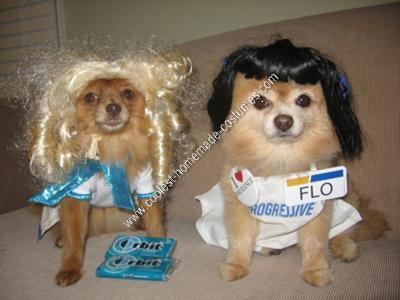 Coolest Commercial Divas Pet Dog Costumes