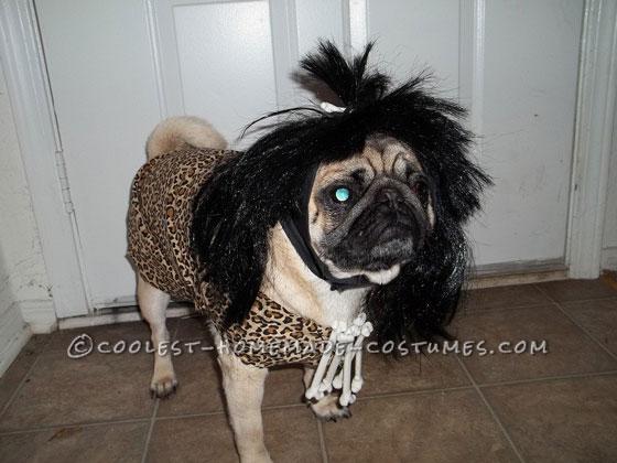 Coolest Cavedog Dog Costume