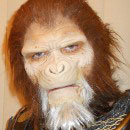 Planet of the Apes Costumes