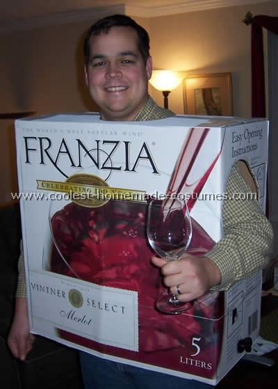Homemade Wine Box Costume
