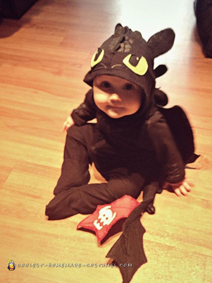 How to Train Your Dragon Family Costumes