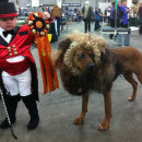 Lion Tamer and Lion Costumes