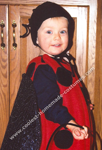 Lady Bug Costume  sc 1 st  Coolest Homemade Costumes & Coolest Homemade Ladybug Costumes